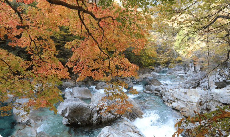 秋 奈良県・天川村