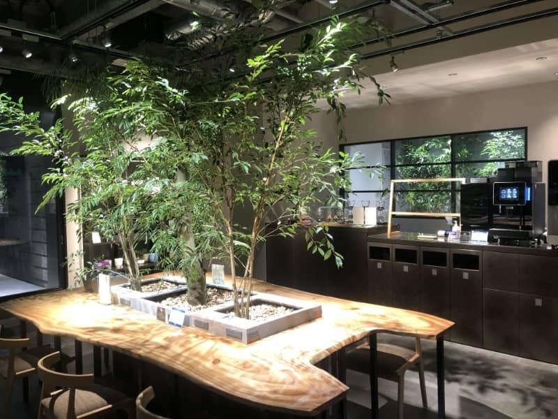 野村不動産「H¹O渋谷神南」〜働く人のためのバイオフィリックデザイン