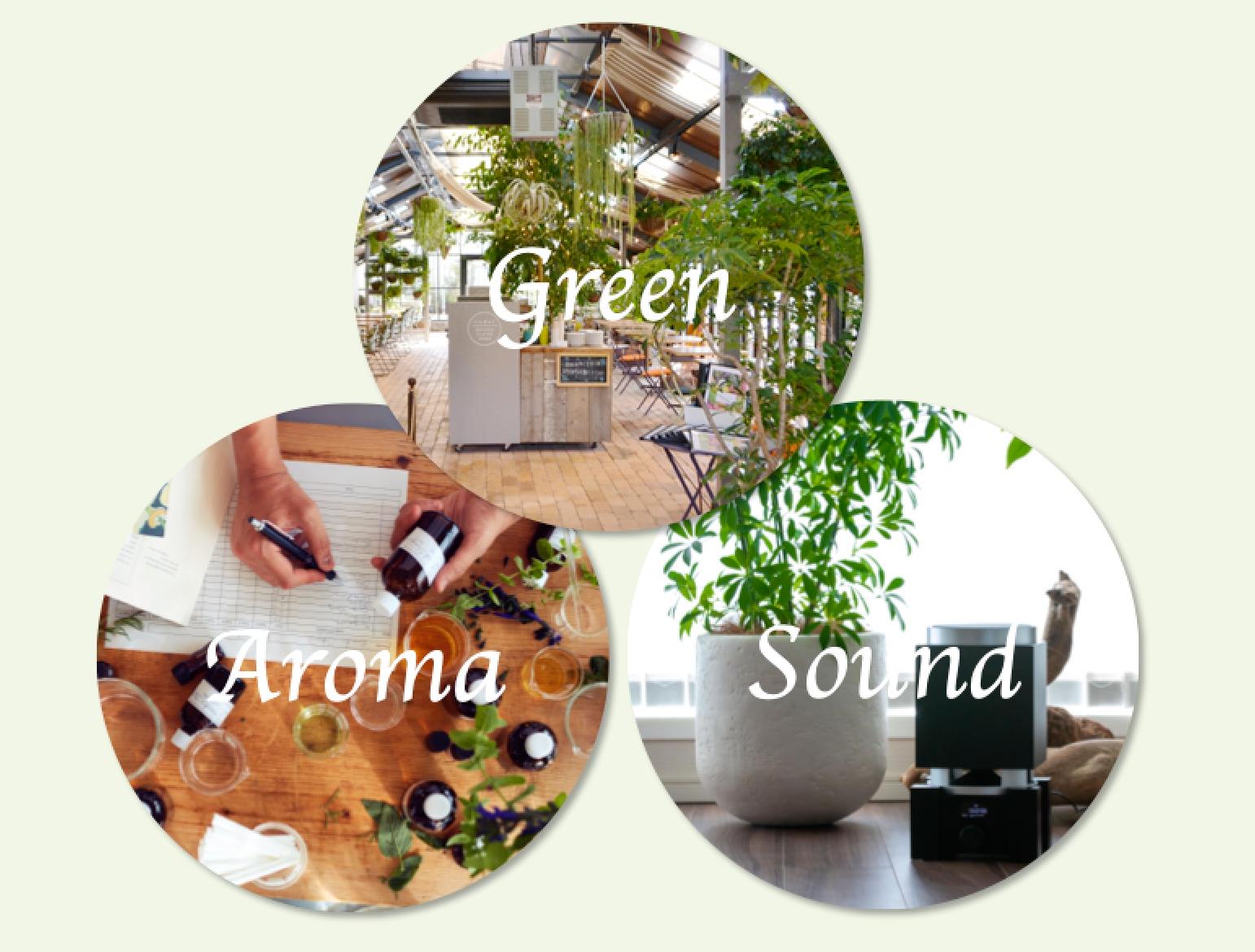 【座談会】オフィス環境改善の手法とその効果〜グリーン・香り・BGMの効果的な取り入れ方